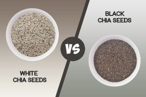 White vs Black Chia Seeds