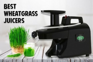 best wheatgrass juicer